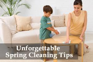 Thinking Spring?  Cleaning Tips You Won't Want to Forget