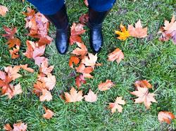 Forget the Garland for Now: Prepare Your Yard for Winter