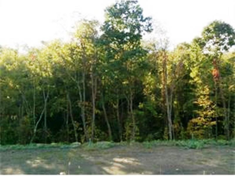 130 Arbor Trail Drive #4B