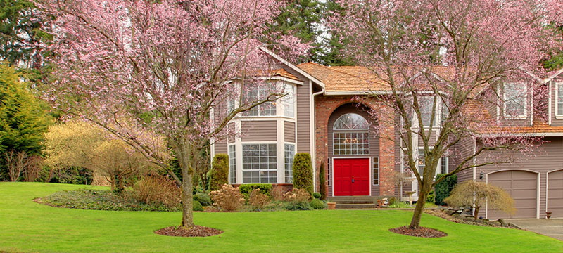 The Deal with Curb Appeal? Maximize Your Home's Exterior with Minimal Investment!