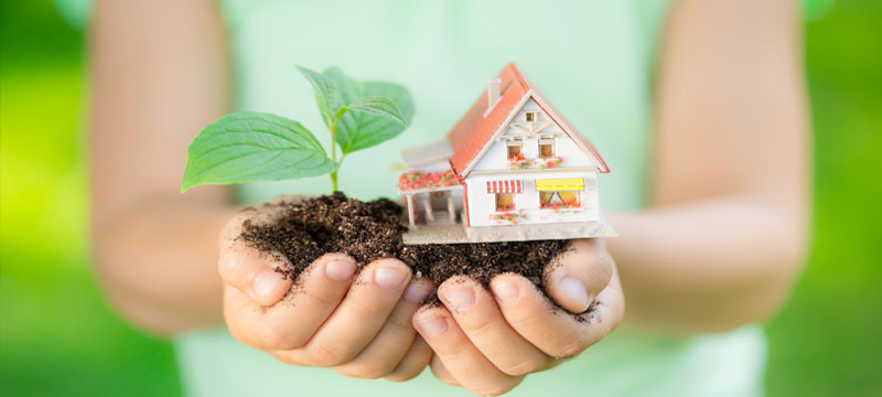 Celebrate Earth Day the Easy Way: Five Green Ideas for Your Home