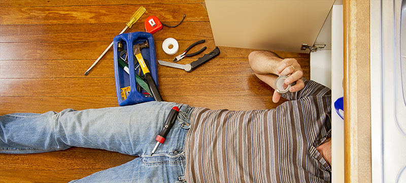 Thrive, Homeowners! Master these 10 Survival Skills!