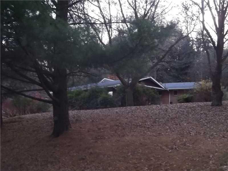 Forest Hills Boro